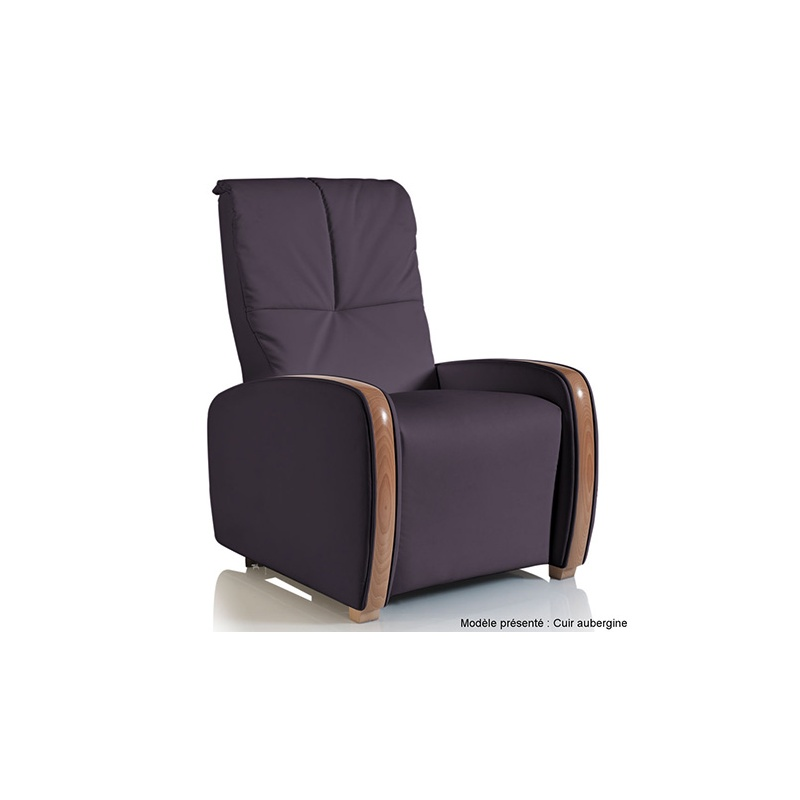 fauteuil releveur 2 moteurs montreal fauteuil relax maliterie. Black Bedroom Furniture Sets. Home Design Ideas